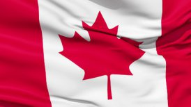 Realistic 3d seamless looping Canada flag waving in the wind. LOOP