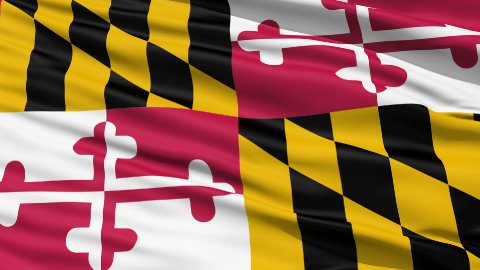 Waving Flag Of The US State of Maryland - stock footage