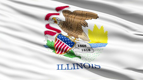 Waving Flag Of The US State of Illinois - stock footage