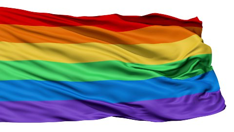 Realistic 3D detailed slow motion gay flag in the wind - stock footage
