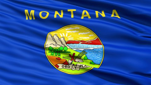 Waving Flag Of The US State of Montana - stock footage