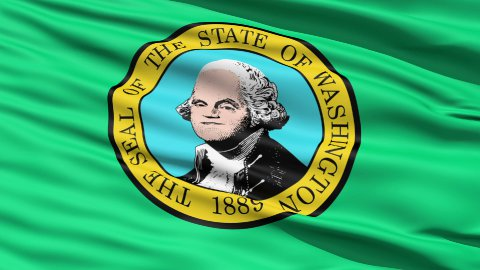 Waving Flag Of State Of Washington - stock footage