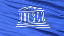 UNESCO Waving Flag