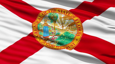 Waving Flag Of The US State of Florida - stock footage
