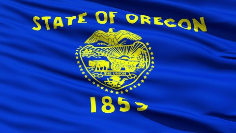 Waving Flag Of The State Of Oregon - stock footage