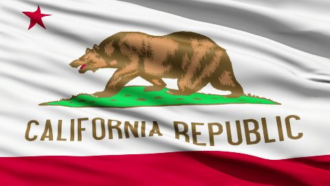 Waving Flag Of The US State Of California - stock footage