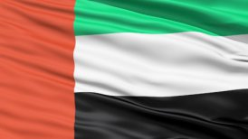 Realistic 3D detailed slow motion United Arab Emirates flag in the wind
