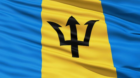 Fluttering Flag Of Barbados - stock footage