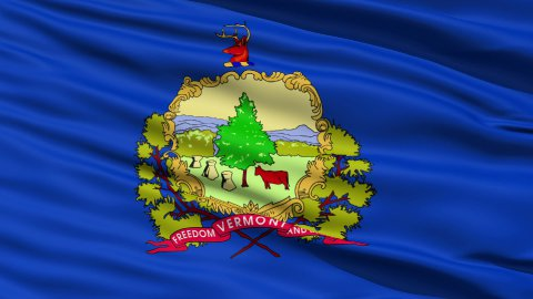 Waving Flag Of The State Of Vermont - stock footage