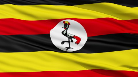 Waving national flag of Uganda - stock footage