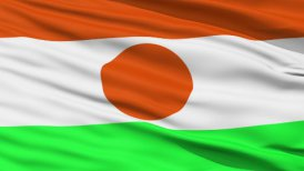 Waving national flag of Niger LOOP