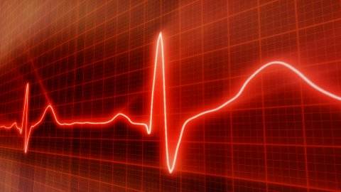 seamless loop red background EKG electrocardiogram pulse real waveform - stock footage