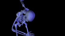 Skeleton Classic Dance Bow CGI HD - motion graphic