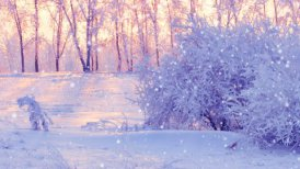 winter scene in park panning - motion graphic