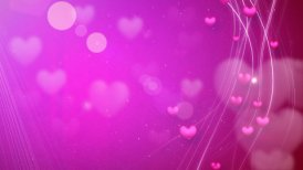 lines and hearts pink romantic loop background
