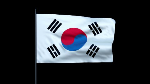 South Korea Flag Waving, Seamless Loop - stock footage
