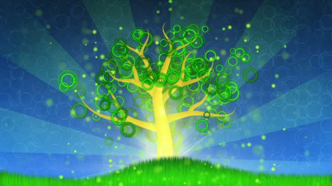growing tree animation - stock footage