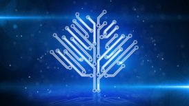 blue circuit board electronic hi-tech tree loop - motion graphic