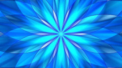 Abstract flower design  - stock footage