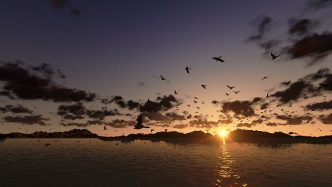 Ducks flying, timelapse clouds with sea and mountain ridge - stock footage