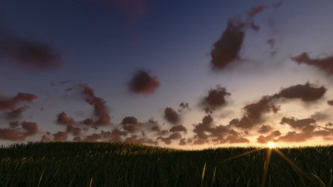 Flying above grass sunrise timelapse, night to day - stock footage