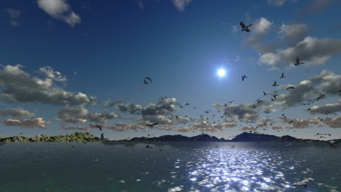 Ducks flying, timelapse sunset with sea and mountain ridge - stock footage