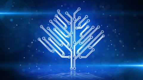 blue circuit board electronic hi-tech growing tree - stock footage