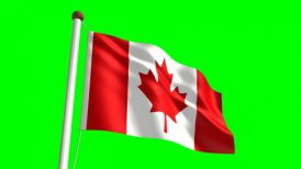 Canada flag - motion graphic