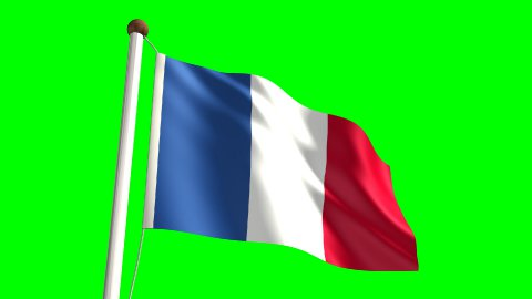 France flag - stock footage