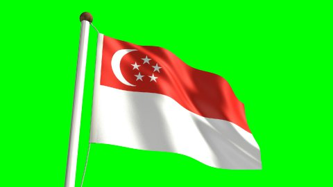 Singapore flag - stock footage