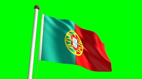 Portugal flag - stock footage