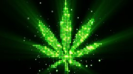 cannabis leaf shape last 10s loop - editable clip, motion graphic, stock footage