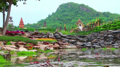 pond in Nong Nooch tropical garden in Thailand - stock footage