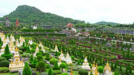 Nong Nooch tropical garden and mountain in Thailand - motion graphic