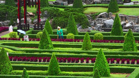 street cleaner in Nong Nooch tropical garden in Thailand - stock footage