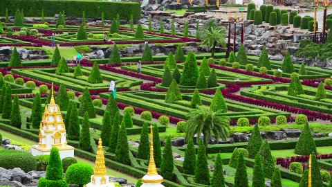 Nong Nooch tropical botanical garden in Thailand - stock footage