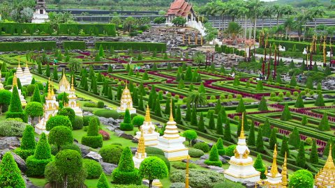 tropical garden Nong Nooch in Thailand - stock footage