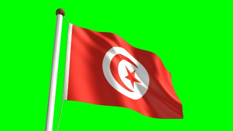 Tunisia flag - stock footage