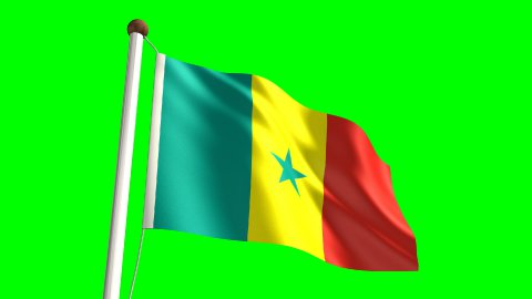 Senegalese flag - stock footage