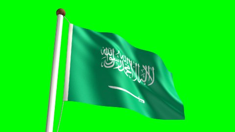 Saudi Arabian flag - stock footage