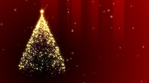 Chiristmas Tree - stock footage