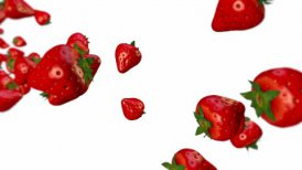 Strawberry - motion graphic