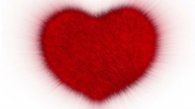 Furry Heart - editable clip, motion graphic, stock footage