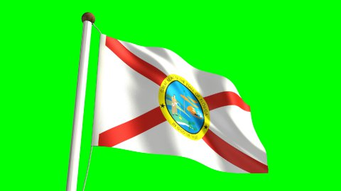 Florida flag - stock footage