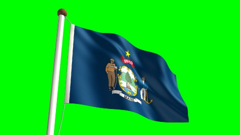 Maine Flag - stock footage