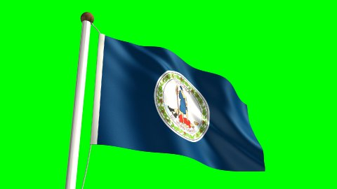 Virginia flag - stock footage