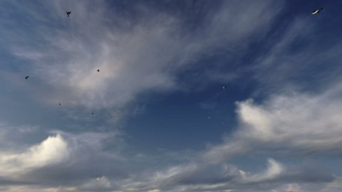 Pigeons flying against cloudy blue sky - stock footage