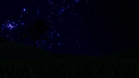 Tree Silhouette on Meadow and Starry Sky, Time Lapse, cam fly - stock footage