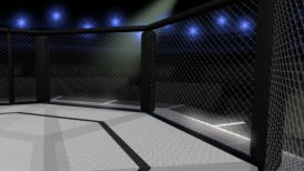 Octagon Fighting Ring Interior - motion graphic