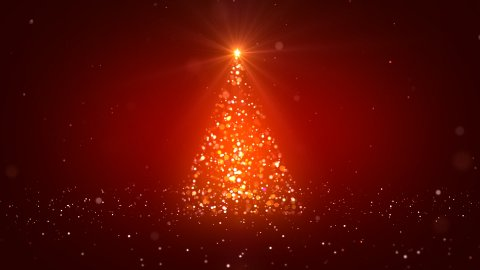The Christmas tree_042 - stock footage